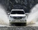 Toyota Land Cruiser Prado thay đổi nhỏ - sức hút lớn